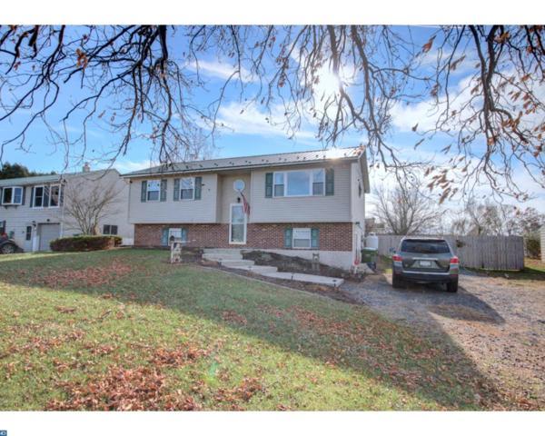 1409 Stag Drive, Auburn, PA 17922 (#7087888) :: Ramus Realty Group