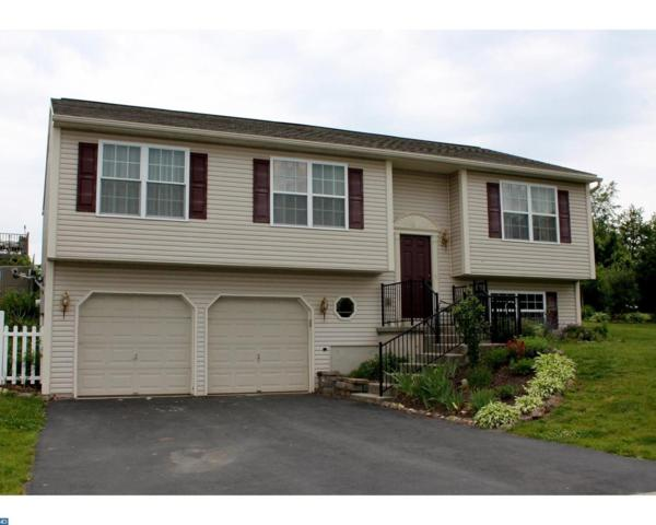 3 Lowland Cove, Pine Grove, PA 17963 (#7094111) :: Ramus Realty Group