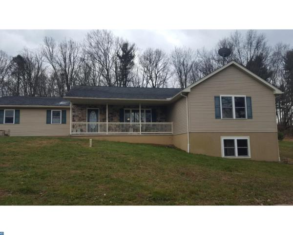 32 Wild Cherry Road, Schuylkill Haven, PA 17972 (#7095003) :: Ramus Realty Group