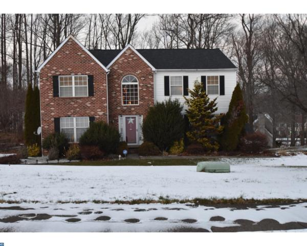 4231 Tara Circle, Upper Chichester, PA 19061 (#7096231) :: The Katie Horch Real Estate Group