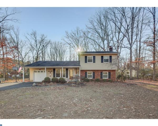 53 Rye Lane, Shamong, NJ 08088 (#7099550) :: The Meyer Real Estate Group