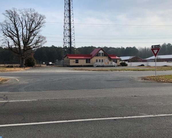 17959 S Dupont Highway, Harrington, DE 19952 (#7102905) :: REMAX Horizons