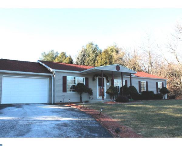 1196 Wynonah Drive, Auburn, PA 17922 (#7112630) :: Ramus Realty Group