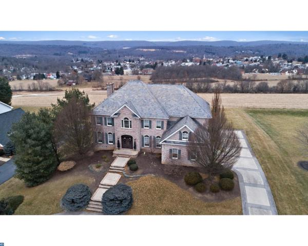 3010 Ridgeview Drive, Orwigsburg, PA 17961 (#7114057) :: Ramus Realty Group