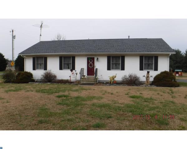 14556 Oak Road, Greenwood, DE 19950 (MLS #7114539) :: RE/MAX Coast and Country