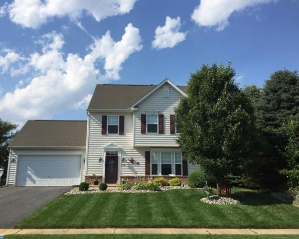 138 Golden Plover Drive, Smyrna, DE 19977 (MLS #7115706) :: The Force Group, Keller Williams Realty East Monmouth