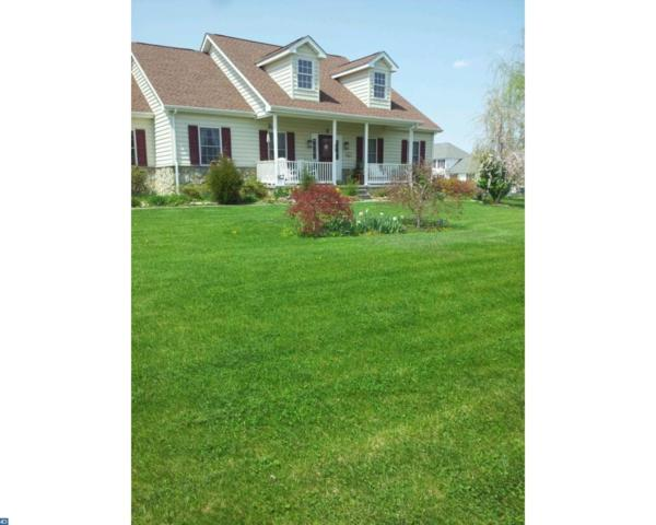 39 Fawn Path Drive, Camden Wyoming, DE 19934 (MLS #7115773) :: RE/MAX Coast and Country