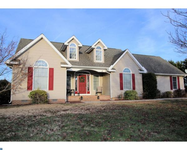 100 Matthews Circle, Milford, DE 19963 (MLS #7115779) :: RE/MAX Coast and Country