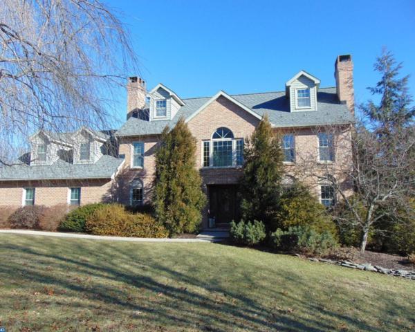 100 Erlane Road, Orwigsburg, PA 17961 (#7116654) :: Ramus Realty Group