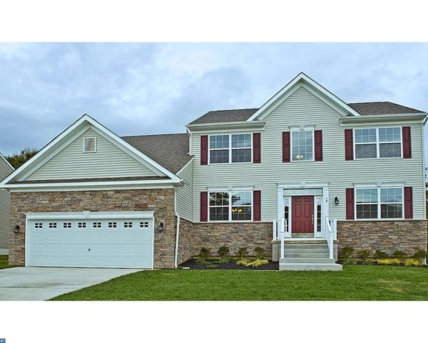 1216 Pimpernell Path, Middletown, DE 19709 (#7122415) :: The John Collins Team