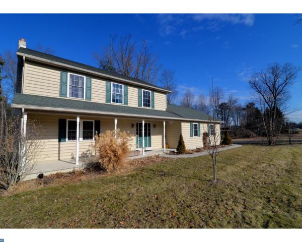 213 Mexico Road, Pine Grove, PA 17963 (#7125723) :: Ramus Realty Group