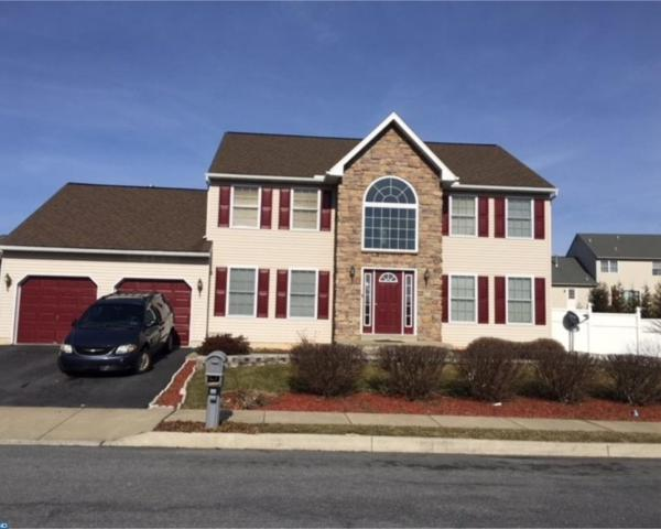 18 Shelly Drive, Sinking Spring, PA 19608 (#7126377) :: REMAX Horizons