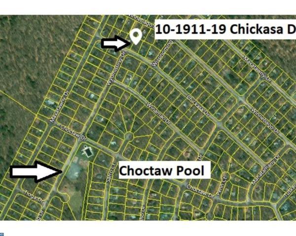 10 Chickasa, Pocono Lake, PA 18347 (#7127474) :: REMAX Horizons