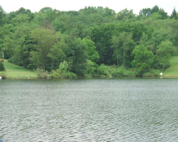 886 Red Oak Cove, Auburn, PA 17922 (#7127780) :: Ramus Realty Group