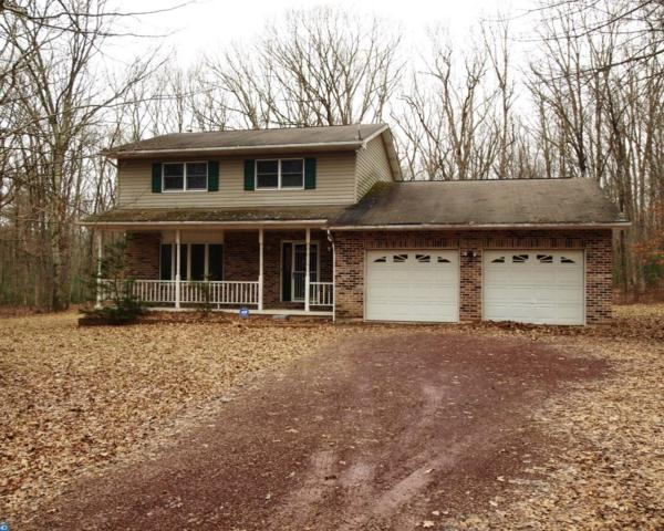 121 Blue Mountain Court, Palmerton, PA 18058 (MLS #7129454) :: Jason Freeby Group at Keller Williams Real Estate