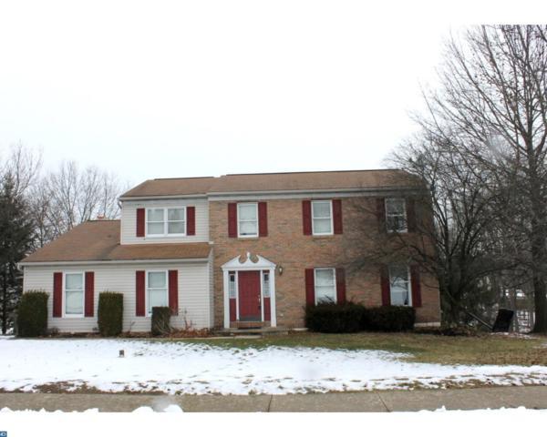 113 Balsam Drive, Douglassville, PA 19518 (#7130039) :: Ramus Realty Group