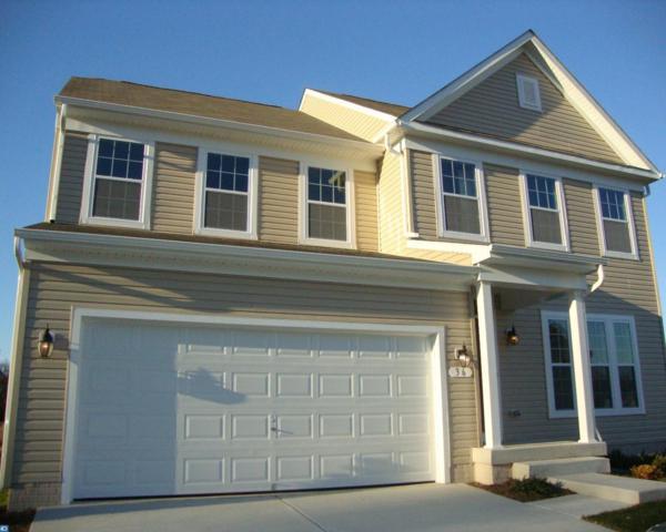 Lot 83 Theresa Way, Magnolia, DE 19962 (#7130921) :: REMAX Horizons