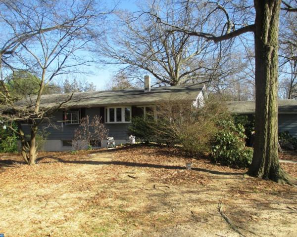 308 Wisseman Avenue, Milford, DE 19963 (MLS #7131065) :: RE/MAX Coast and Country
