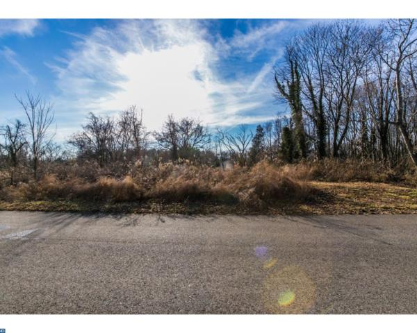 Lot 1 Dogwood Place, Newark, DE 19713 (#7131447) :: Erik Hoferer & Associates