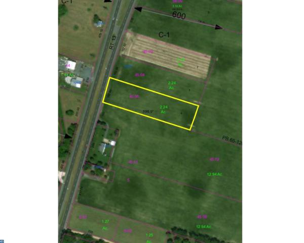 na Sussex Highway, Greenwood, DE 19950 (MLS #7131748) :: RE/MAX Coast and Country