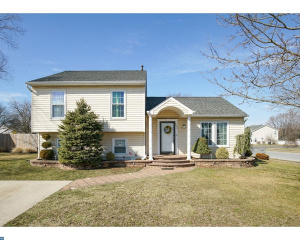 102 Cormarty Drive, Williamstown, NJ 08094 (MLS #7132140) :: The Dekanski Home Selling Team