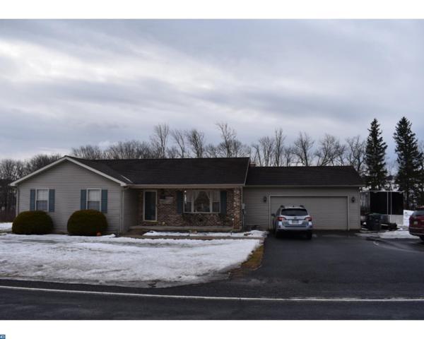 804 Red Dale Road, Orwigsburg, PA 17961 (#7133486) :: Ramus Realty Group