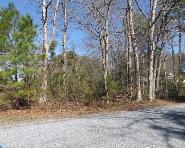 Lot 74 Bennum Switch Road, Georgetown, DE 19947 (#7136258) :: RE/MAX Coast and Country