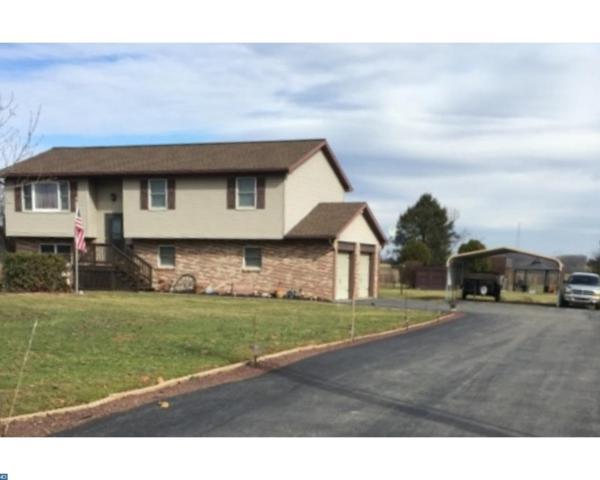 343 Molasses Hill Road, Bernville, PA 19506 (#7136700) :: Ramus Realty Group