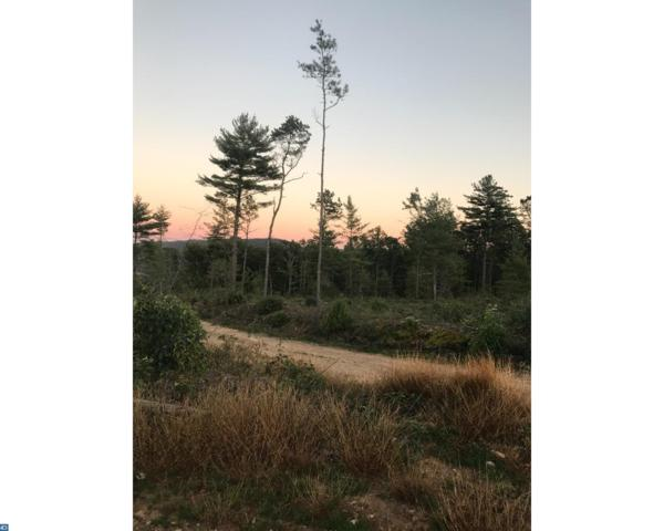 00 Mountain Road, Ashland, PA 17921 (#7140233) :: Ramus Realty Group