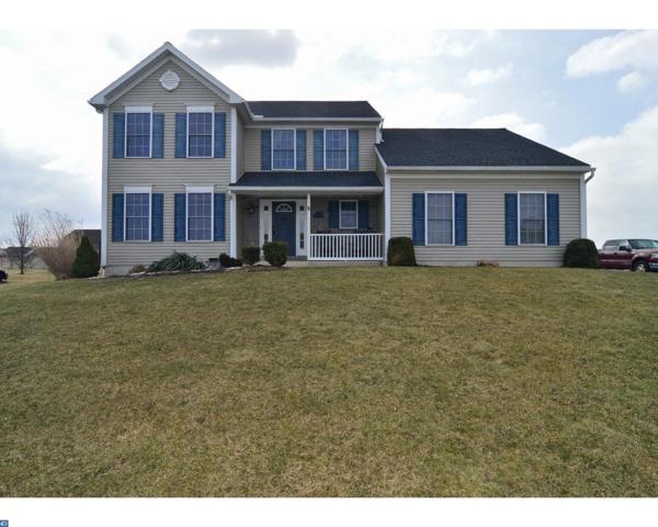 108 Dogwood Drive, Bernville, PA 19506 (#7141223) :: Ramus Realty Group