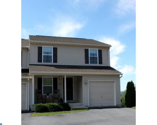 32 E Abby Lane, Schuylkill Haven, PA 17972 (#7141432) :: Ramus Realty Group