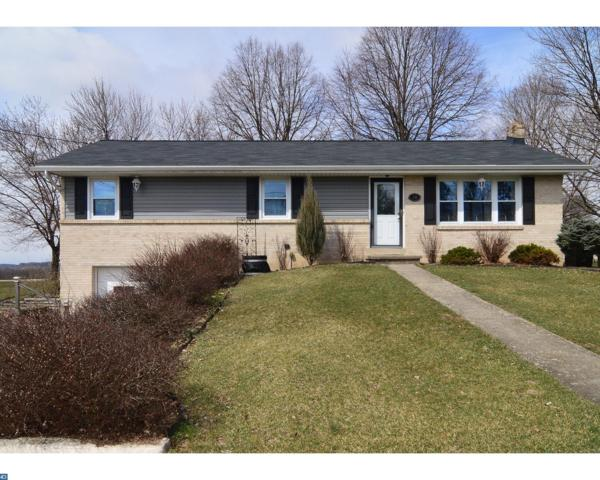 20 Hill Road, Bernville, PA 19506 (#7143442) :: Ramus Realty Group