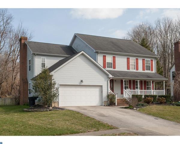 208 Meadow Drive, Dover, DE 19904 (#7144408) :: REMAX Horizons