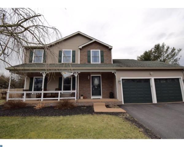 910 Waterlilly Lane, Middletown, DE 19709 (#7145074) :: REMAX Horizons