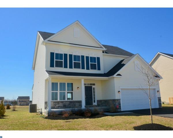 249 Saffron Circle, Middletown, DE 19709 (MLS #7145210) :: The Force Group, Keller Williams Realty East Monmouth