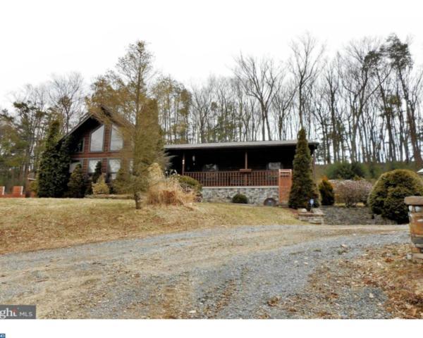 62 Lakefront Drive, Pine Grove, PA 17963 (#7147579) :: Ramus Realty Group