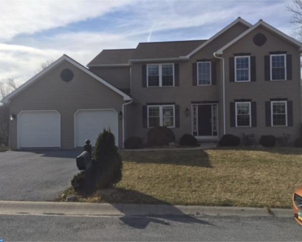 102 Holly Road, Orwigsburg, PA 17961 (#7152124) :: Ramus Realty Group