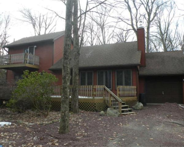 14 Moseywood Road, Lake Harmony, PA 18624 (#7155082) :: Erik Hoferer & Associates