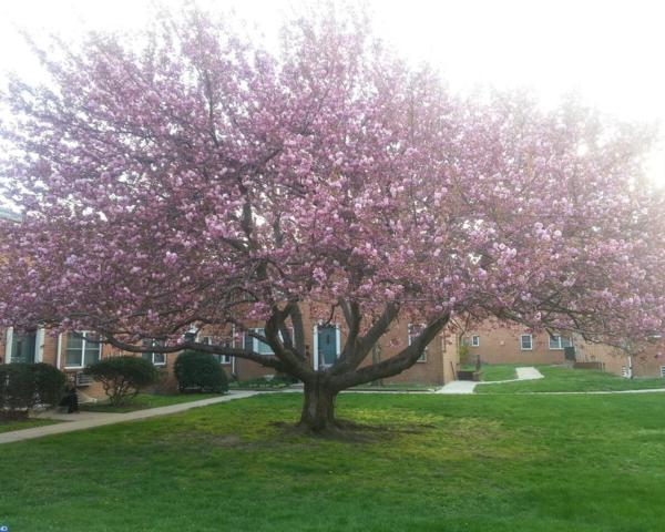 138 The Orchard F, East Windsor, NJ 08512 (#7158293) :: McKee Kubasko Group