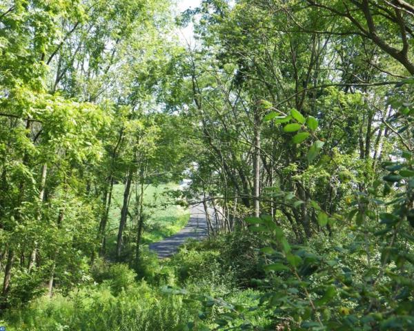 0 Hepler Road, Klingerstown, PA 17941 (#7159828) :: REMAX Horizons