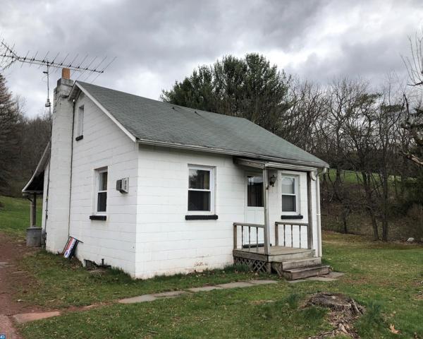 1395 Red Dale Road, Orwigsburg, PA 17961 (#7164163) :: Ramus Realty Group