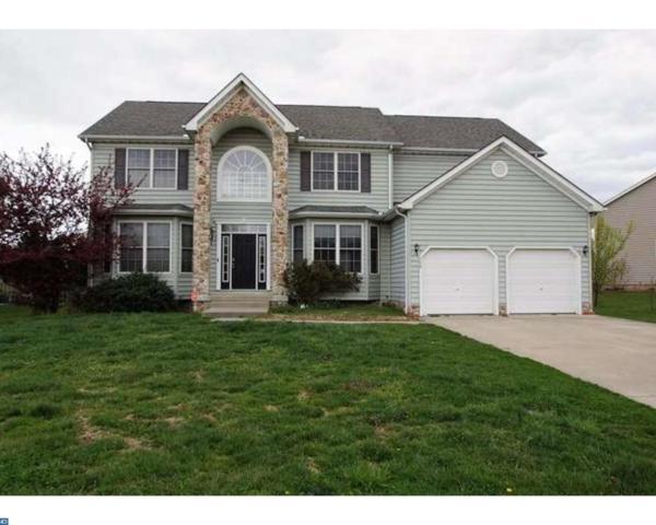 339 Stone Ridge Drive, Dover, DE 19901 (#7165081) :: REMAX Horizons