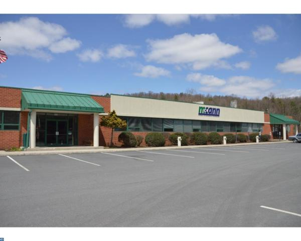 2650 Woodglen Road, Pottsville, PA 17901 (#7166048) :: Ramus Realty Group