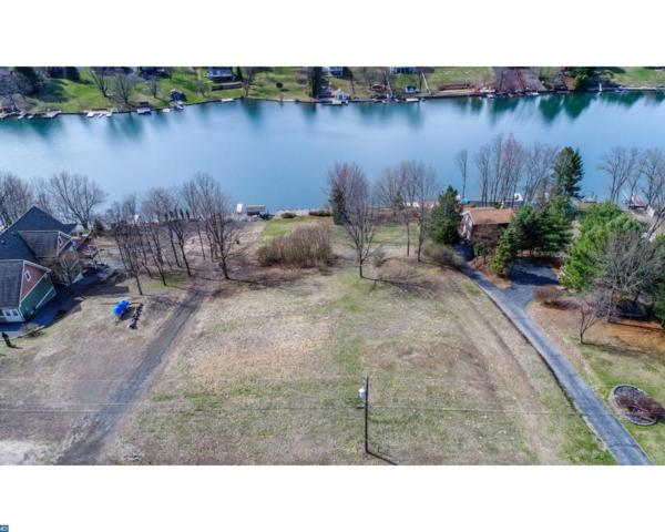1484 Bearcat Cove, Auburn, PA 17922 (#7166266) :: Ramus Realty Group
