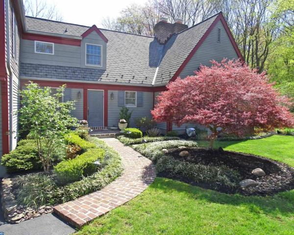 3052 Dileo Drive, Lafayette Hill, PA 19444 (#7173784) :: The Toll Group