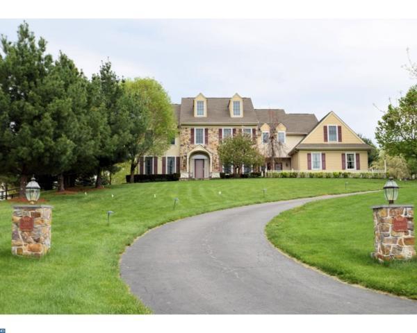 206 Dylan Lane, Phoenixville, PA 19460 (#7176802) :: REMAX Horizons