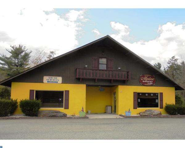 1795 State Route 903, Jim Thorpe, PA 18229 (#7178582) :: Daunno Realty Services, LLC