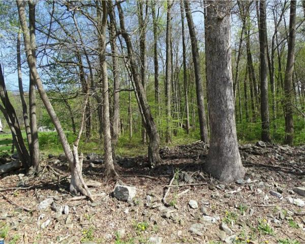 0 Hollow Road, Chester Springs, PA 19425 (#7180538) :: The John Collins Team