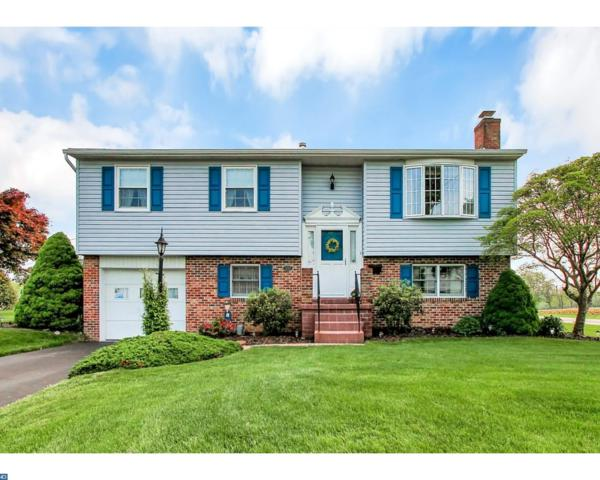 2154 Mayo Drive, Reading, PA 19601 (#7182397) :: The John Collins Team
