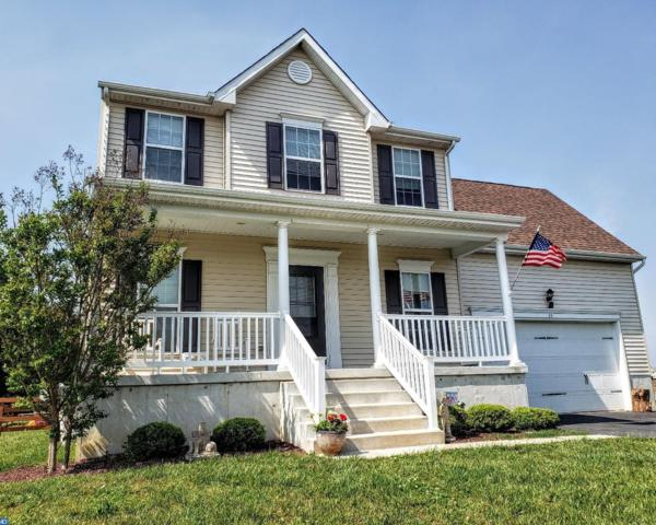 24 Kings Mill Drive, Felton, DE 19943 (#7182569) :: REMAX Horizons